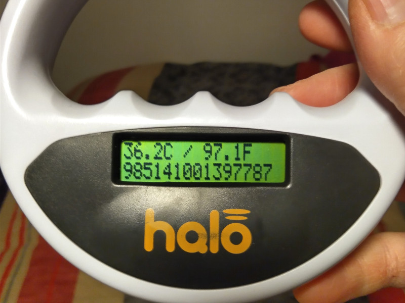 xBT_Halo_Scanner_reading
